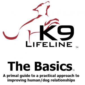 The Basics Book Cover